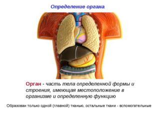 Определение органа Орган - часть тела определенной формы и строения, имеющая