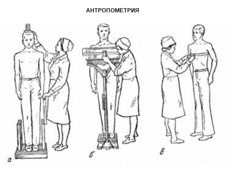 антропометрический метод определения уровня роста и развития орган празднование громкие танцы