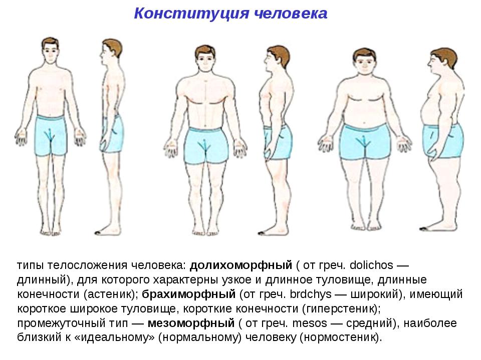 диспластическое телосложение фото