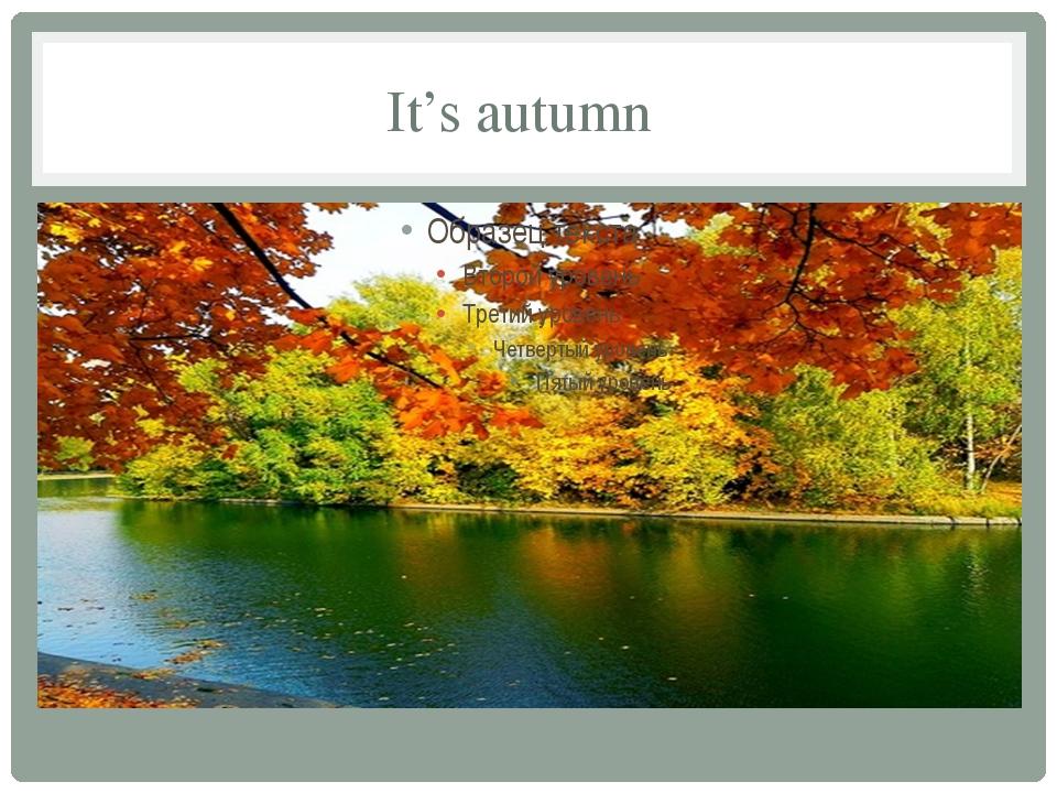 It's autumn