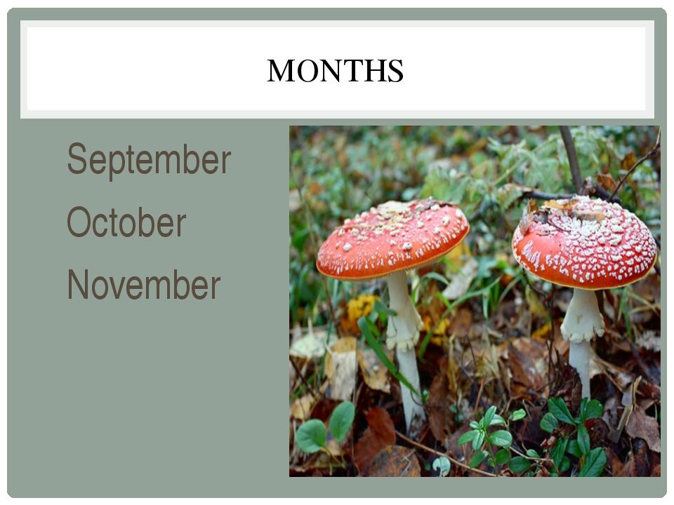 MONTHS September October November
