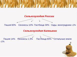Сельхозугодия России Пашня 60% Сенокосы 10% Пастбища 30% Сады, виноградники