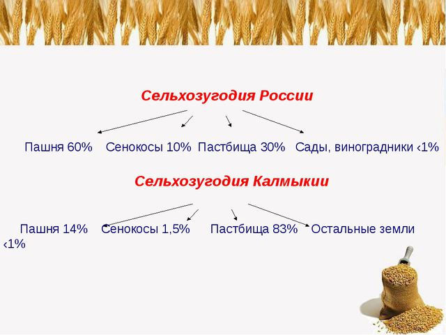 Сельхозугодия России Пашня 60% Сенокосы 10% Пастбища 30% Сады, виноградники...