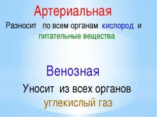 Артериальная Разносит по всем органам кислород и питательные вещества Венозна