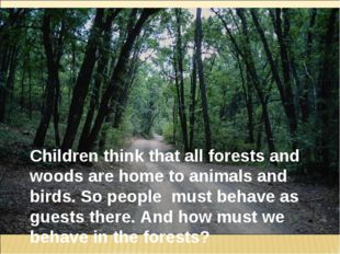 Children think that all forests and woods are home to animals and birds. So p