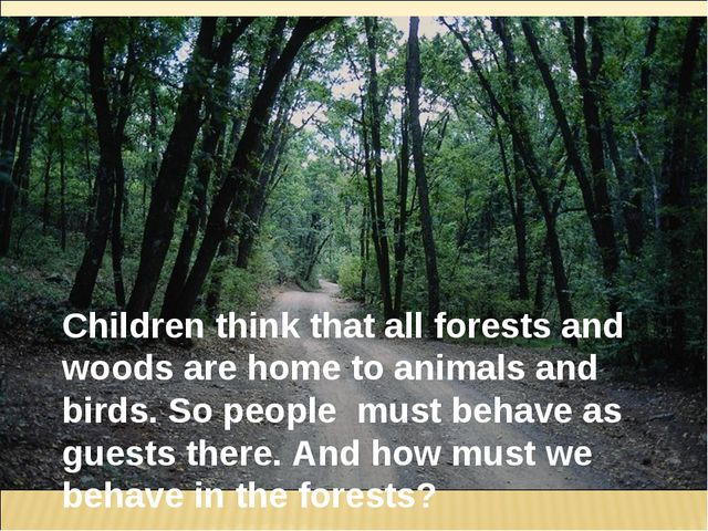 Children think that all forests and woods are home to animals and birds. So p...