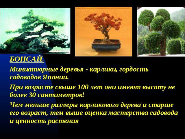 БОНСАЙ. Миниатюрные деревья - карлики, гордость садоводов Японии. При возрас...
