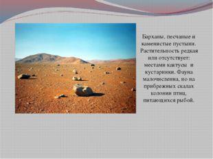 Барханы, песчаные и каменистые пустыни. Растительность редкая или отсутствует