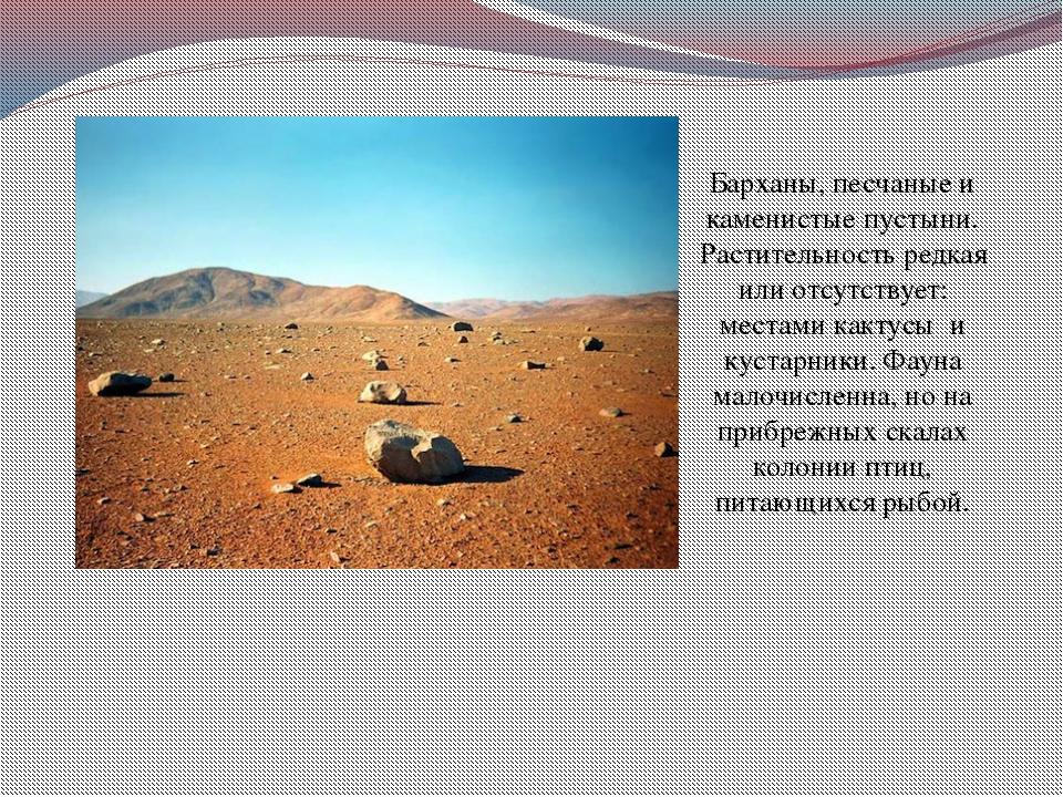 Барханы, песчаные и каменистые пустыни. Растительность редкая или отсутствует...