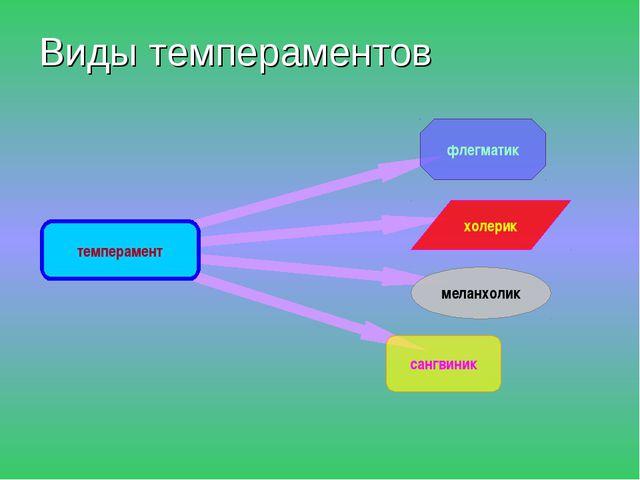 Виды темпераментов темперамент флегматик меланхолик холерик сангвиник