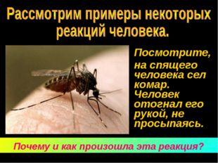 Посмотрите, на спящего человека сел комар. Человек отогнал его рукой, не пр
