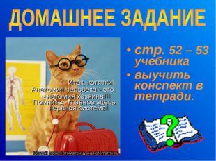 стр. 52 – 53 учебника выучить конспект в тетради.