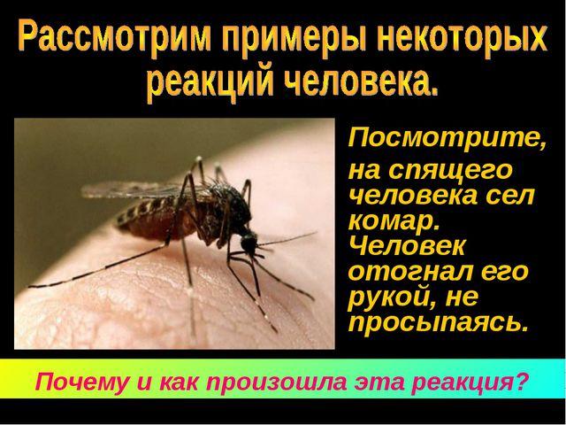 Посмотрите, на спящего человека сел комар. Человек отогнал его рукой, не пр...