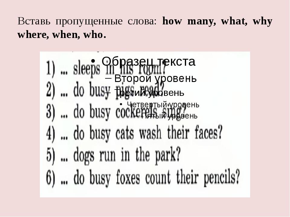 Вставь пропущенные слова: how many, what, why where, when, who.