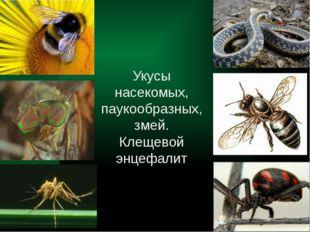 Укусы насекомых, паукообразных, змей. Клещевой энцефалит