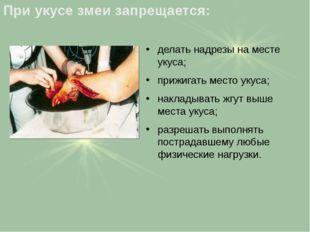 делать надрезы на месте укуса; прижигать место укуса; накладывать жгут выше м