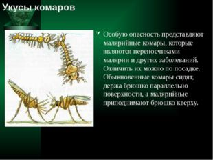 Особую опасность представляют малярийные комары, которые являются переносчика
