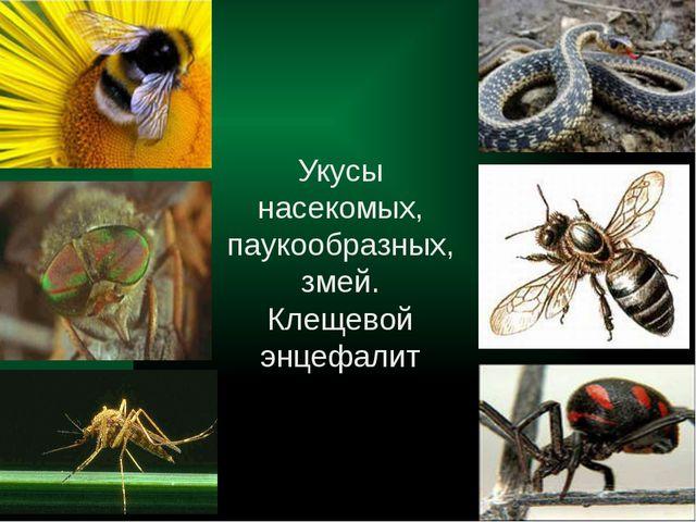 Укусы змей и насекомых реферат 9735