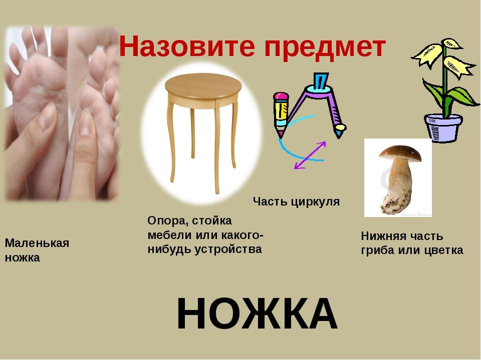 Назовите предмет Маленькая ножка Опора, стойка мебели или какого-нибудь устро...