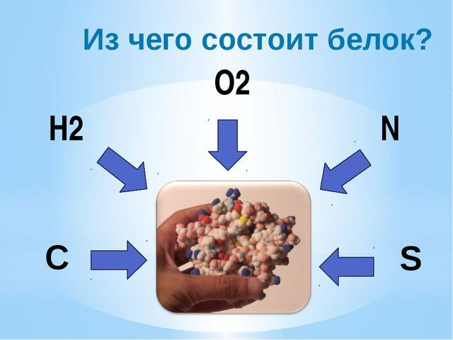 Из чего состоит белок? H2 C O2 N S