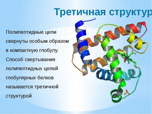 Третичная структура Полипептидные цепи свернуты особым образом в компактную г...