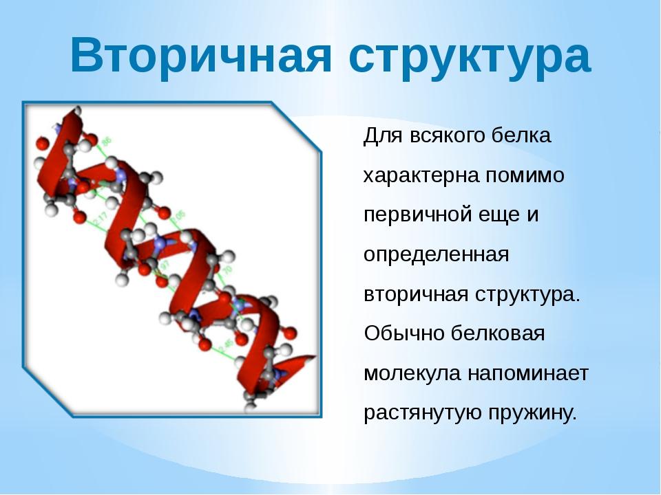 Вторичная структура Для всякого белка характерна помимо первичной еще и опред...