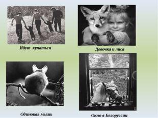 Идут купаться Одинокая мышь Девочка и лиса Окно в Белоруссии