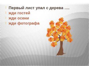 Первый лист упал с дерева …. жди гостей жди осени жди фотографа