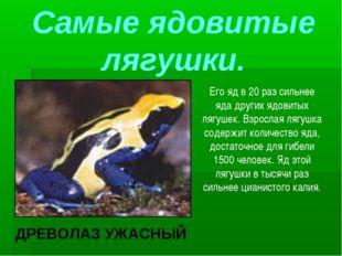 Самые ядовитые лягушки. Его яд в 20 раз сильнее яда других ядовитых лягушек.