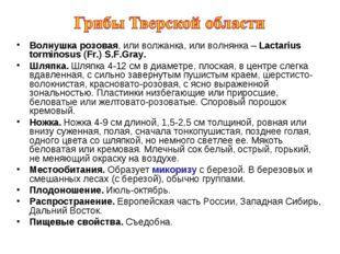 Волнушка розовая, или волжанка, или волнянка – Lactarius torminosus (Fr.) S.F