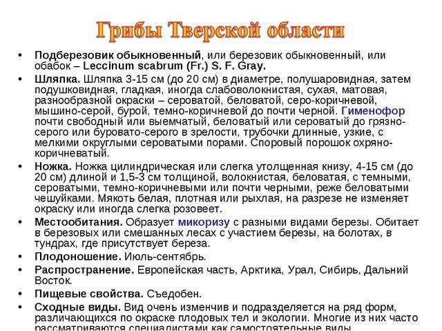 Подберезовик обыкновенный, или березовик обыкновенный, или обабок – Leccinum...