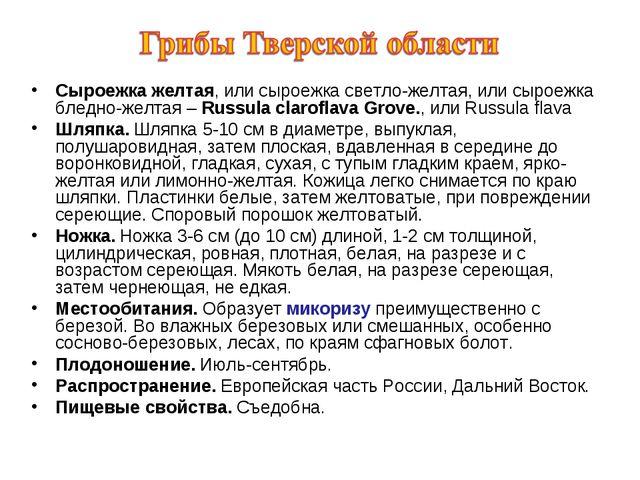 Сыроежка желтая, или сыроежка светло-желтая, или сыроежка бледно-желтая – Rus...