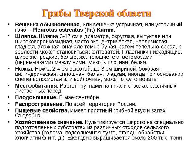 Вешенка обыкновенная, или вешенка устричная, или устричный гриб – Pleurotus o...