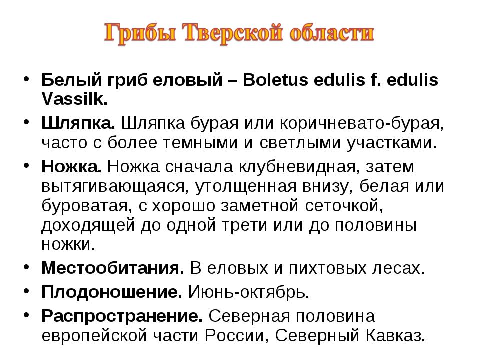 Белый гриб еловый – Boletus edulis f. edulis Vassilk. Шляпка. Шляпка бурая ил...