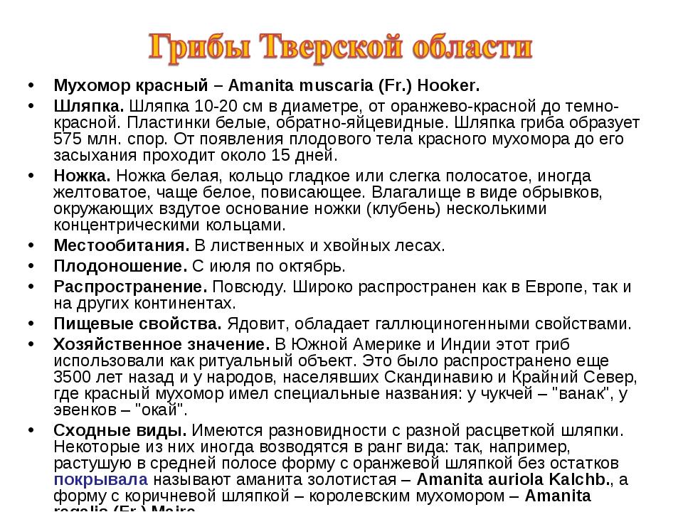 Мухомор красный – Amanita muscaria (Fr.) Hooker. Шляпка. Шляпка 10-20 см в ди...