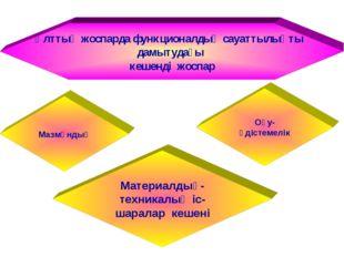 Ұлттық жоспарда функционалдық сауаттылықты дамытудағы кешенді жоспар Мазмұнды