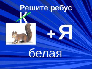 белая к + Решите ребус Я