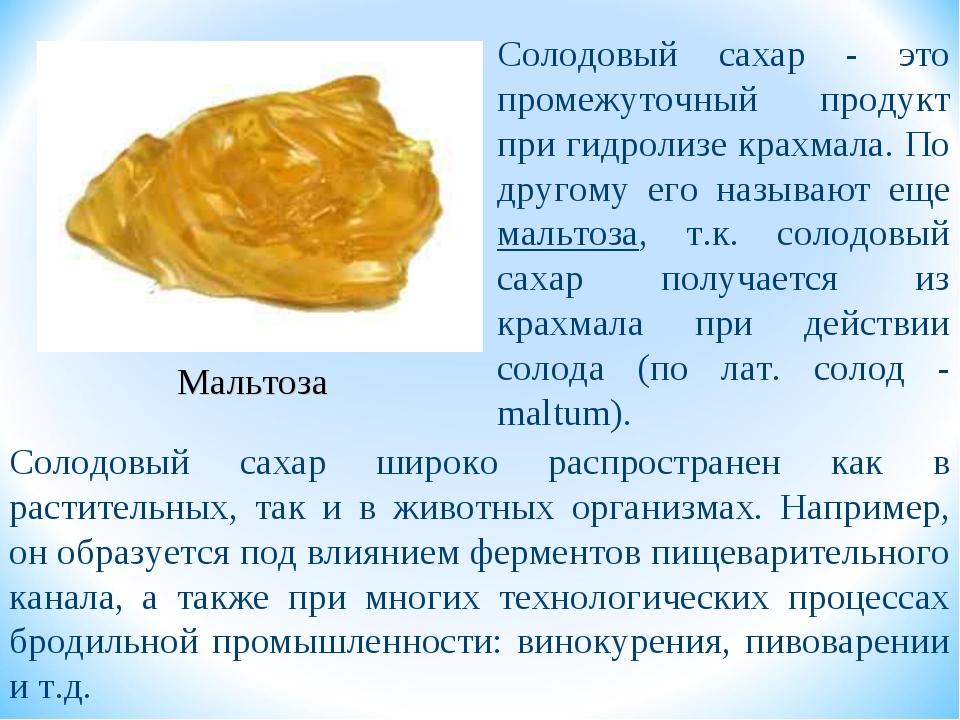 Мальтоза Солодовый сахар - это промежуточный продукт при гидролизе крахмала....