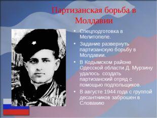 Партизанская борьба в Молдавии Спецподготовка в Мелитопеле. Задание развернут