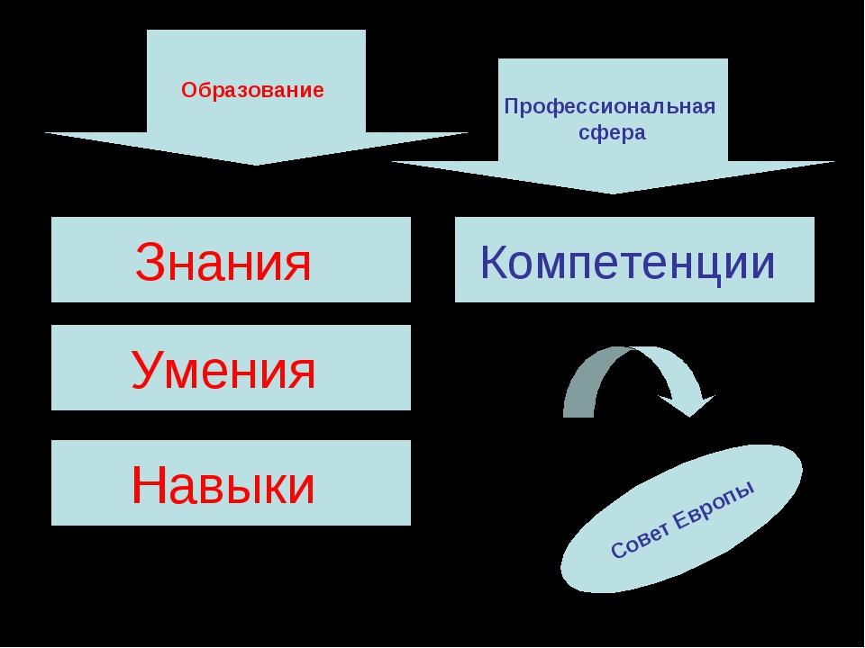Образование Профессиональная сфера Знания Умения Навыки Компетенции Совет Евр...
