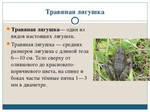 Травяная лягушка Травяная лягушка— один из видов настоящих лягушек. Травяная