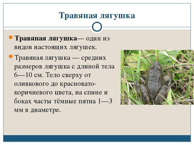 Травяная лягушка Травяная лягушка— один из видов настоящих лягушек. Травяная...