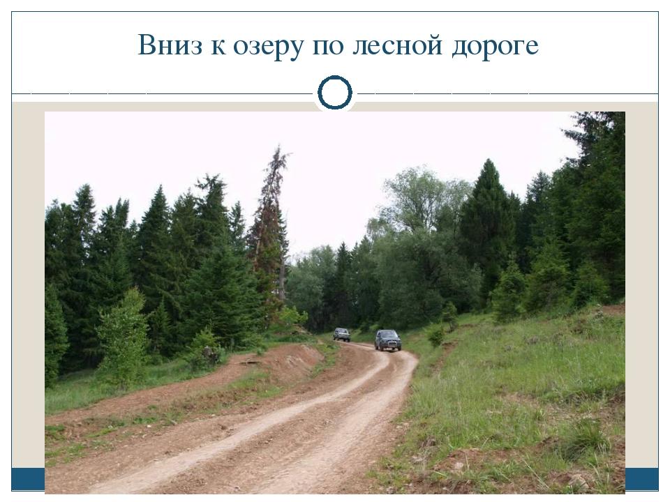 Вниз к озеру по лесной дороге