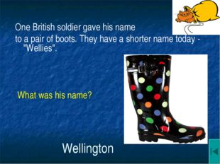 Wellington One British soldier gave his name to a pair of boots. They have a