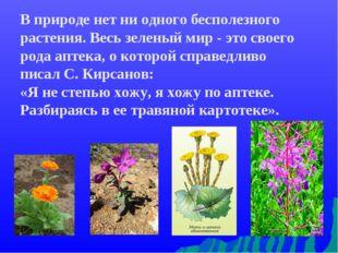 В природе нет ни одного бесполезного растения. Весь зеленый мир - это своего