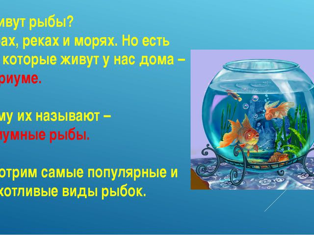 Где живут рыбы? В озерах, реках и морях. Но есть рыбы, которые живут у нас до...
