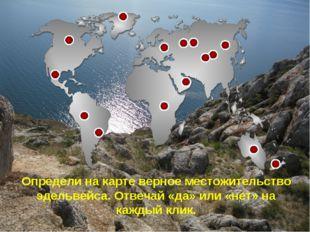 Определи на карте верное местожительство эдельвейса. Отвечай «да» или «нет» н