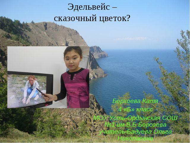 Эдельвейс – сказочный цветок? Борхоева Катя 4 «Б» класс МОУ Усть-Ордынская СО...