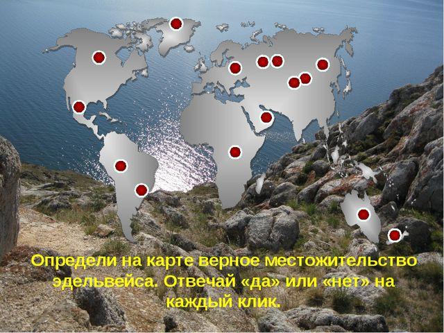 Определи на карте верное местожительство эдельвейса. Отвечай «да» или «нет» н...