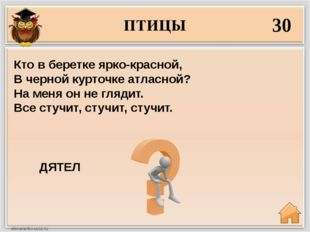 ПТИЦЫ 30 ДЯТЕЛ Кто в беретке ярко-красной, В черной курточке атласной? На мен